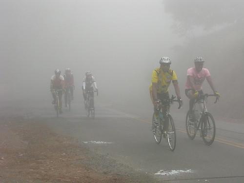 Tunnel Road Fog
