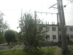 Belorussian border building (Timon91) Tags: train border poland polska railway brest belarus grens grenze terespol polishbelorussianborder