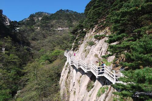 "l13 - ""Trail"" Down from White Goose Ridge"