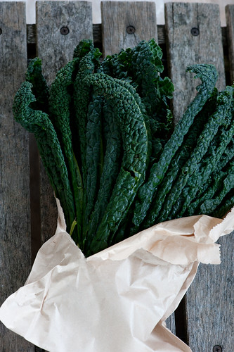 bunch of cavalo nero