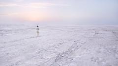 Kutch (nandadevieast) Tags: travel india desert salt gujarat kutch greatrannofkutch saltdesert anuragagnihotri nandadevieast