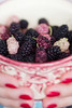 mulberries (ion-bogdan dumitrescu) Tags: summer woman fruits childhood fruit hands child sunny bowl fresh dude ruby ripe mulberry mulberries dud bitzi morusalba morusnigra ibdp mg4469 gettyvacation2010 ibdpro wwwibdpro ionbogdandumitrescuphotography