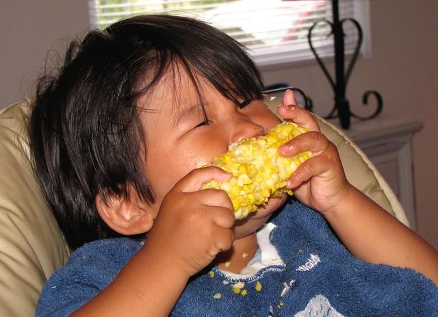 corn lover 2