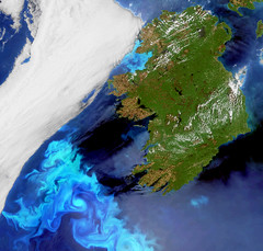 Electric blue plankton blooms off Ireland