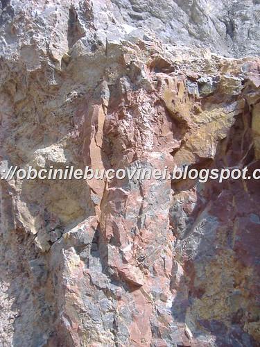 Rezervatia geologica de calcare  triasice Paraul Cailor  (3)