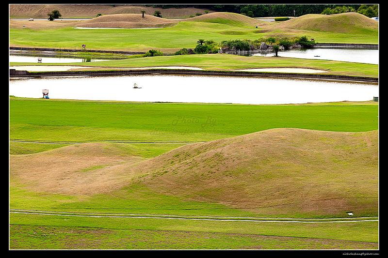 2010-0815 拍出那一片的,翠綠