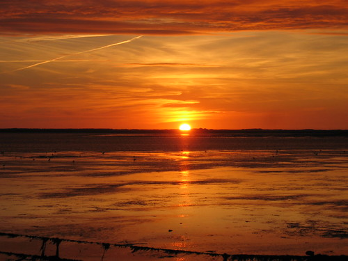 Wadden Sea Sylt 2010