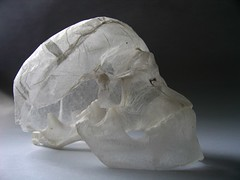 tissue paper sculpture - skull (polyscene) Tags: sculpture art paperart polly poly verity papersculpture polyscene pollyverity papersculptures