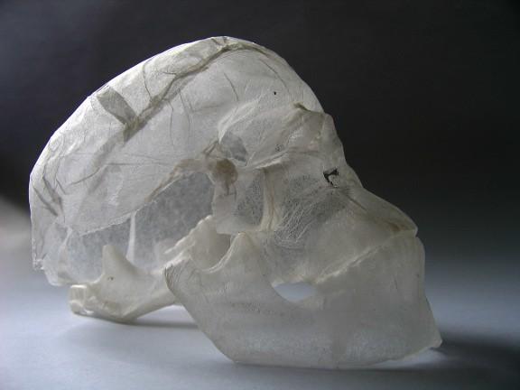 薄棉纸无承托3D骷髅雕塑 - 碌碡画报 - 碌碡画报
