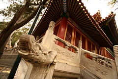 Imperial Gardens 29 (David OMalley) Tags: china city red beauty architecture capital chinese beijing palace forbidden empire imperial  forbiddencity dynasty emperor  grandeur  verbotenestadt citinterdite    verbodenstad cidadeproibida cittproibita yasakehir chineseempire    ipinagbabawalnalungsod cmthnhph