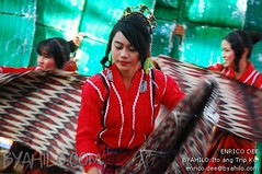 kadayawan sa davao festival 2010 0543 (Enrico_Dee) Tags: festival fiesta philippines davao mindanao magallanes kadayawan byahilo dabao cotabato tboli manobo surallah tausug mandaya matigsalog