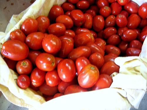 tomatoesplum