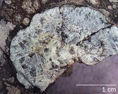 Meteorito de Marruecos