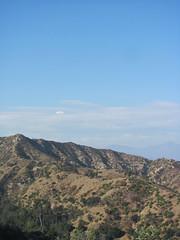 Griffith Park. (Lee Milverton) Tags: la losangeles hollywood hollywoodsign griffithpark griffithobservatory laskyline leemilverton