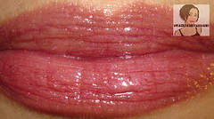 Lipstick Alley Cat Saves Boy Site Www Lipstickalley Com