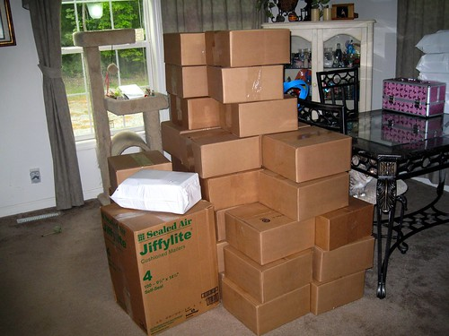 Sex Toys in Boxes From the PHE Sale Filling Up the Dining Room http://flic.kr/p/8vMviT
