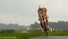 Gerrit Schellens - Winnaar UPC Holland Triathlon 2010 - Almere (Alex Verweij) Tags: new holland rain bike canon 1 belgie nederland explore biking 7d netherland winner dijk triathlon regen gerrit upc fietsen fiets 2010 almere nieuw nr2 winnaar schellens ef70200mmf28lisusm alexverweij upchollandtriathlon gerritschellens upchollandtriathlon2010