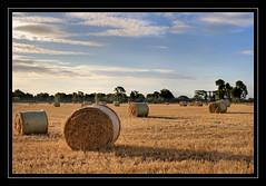 Straw Bales (Robert Riddell) Tags: morning ireland sunrise straw co bales meath