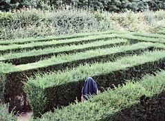 (Gebhart de Koekkoek) Tags: schnbrunn vienna portrait film garden maze labyrinth irrgarten ingopertramer pertramer