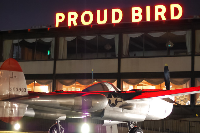 Proud Bird Lightning