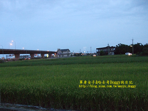 2010-07-19-036