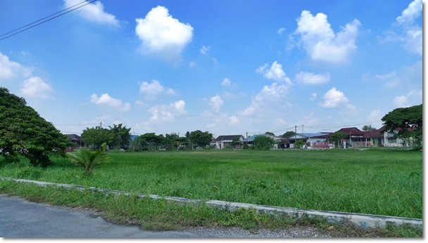 Field Opposite Aulong Heo Pia