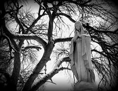 Winter Madonna (elycefeliz) Tags: winter sculpture snow tree cemetery statue cincinnati madonna tombstone gravestone calvary