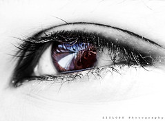 iTen.. (ZiZLoSs) Tags: macro eye canon eos 7d usm f28 aziz ef100mmf28macrousm abdulaziz عبدالعزيز ef100mm zizloss المنيع 3aziz canoneos7d almanie abdulazizalmanie httpzizlosscom