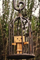 PLEASE RELEASE ME (weasteman) Tags: garden amazon amazoncojp revoltech nikond90 danboard weasteman revoltechdanbo projectdanbo
