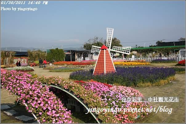 台中后里_中社光觀花市20110130_I6231