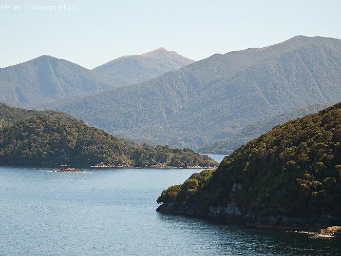 Fiordland-228