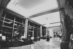 横浜のホテル: Hotel Lobby (Jon-Fū, the写真machine) Tags: yokohama 横浜 snapseed japan 日本 nihon nippon ジャパン ジパング japón जापान japão xapón asia アジア asian orient oriental jonfu 2017 olympus omd em5markii em5ii em5mkii em5mk2 em5mark2 オリンパス mirrorless mirrorlesscamera microfourthirds micro43 m43 mft μft マイクロフォーサーズ ミラーレスカメラ 出張