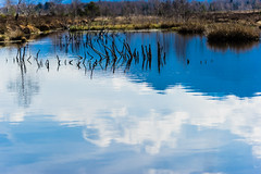 The Sky and the Water (*Capture the Moment*) Tags: 2017 bavaria bayern clouds elemente farbdominanz filzn fotowalk germany himmel matthias natur nature reflection reflections reflexion sky sonya7m2 sonya7mii sonya7mark2 sonya7ii sonyfe2890macrogoss sonyilce7m2 wasser water wolken blau blue cloudy