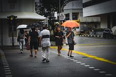 Singapore Street Life (csaradityaa) Tags: singapore streetphoto street photography portrait portraitphotography photooftheday photoofday photo photooftheweek urban nikonid nikond5300 nikon nikond5300photography nikonphotography nikonindonesia nn nikonword nikonflickaward nikoncamera nikonportrait nikonuser nicephoto d5300 indonesia indonesiaphotography