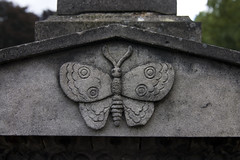 Schmetterling (michael_hamburg69) Tags: friedhof cemetery museum butterfly germany deutschland symbol hamburg papillon mariposa freilichtmuseum hamburgo hambourg ohlsdorf farfalla seele schmetterling amburgo cimetière camposanto бабочка кладбище 汉堡 gottesacker freieundhansestadthamburg lepidopteran heckengarten yī húdié hànbǎo 一只蝴蝶 zhī [漢堡] dammtorfriedhof dammtorfriedhöfe grabmalkulturimwandelderzeit grabmalkultur bestattungskultur [一隻蝴蝶] lepidophera symbolfürdieentfliehendeseele