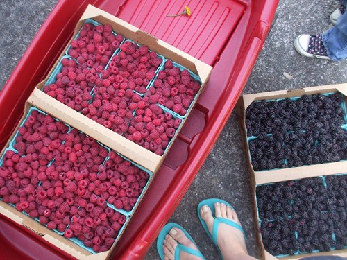 a flat of raspberries and a flat of marionberries