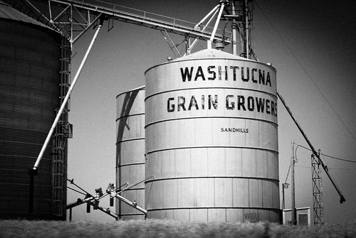 Washtucna Grain