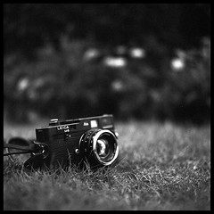 "Leica (Lefty Jor) Tags: camera leica 2 bw hk 120 6x6 film grass 35mm t hongkong day dof bokeh f14 voigtlander 1600 kong hasselblad push ilford m6 nokton planar delta400 500cm carlzeiss ""hong 80mmf28"