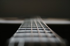 Tanglewood Guitar (Tris Linnell) Tags: macro dof bokeh guitar acoustic strings tanglewood solidtop