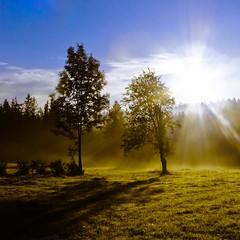 Dawn in Tatra mountains (raphic :)) Tags: park morning las light sky sun mist mountains tree fog forest sunrise shadows meadow poland polska national rays gry tatry tatra poranek zakopane soce wiato mga niebo cienie drzewa ka narodowy promienie wit cyrla toporowa zoniwka