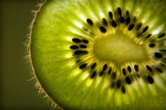 Window Light (Bobshaw) Tags: light green window fruit slice kiwi ki