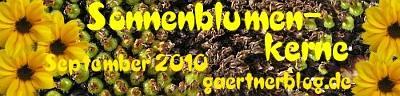 Garten-Koch-Event September: Sonnenblumenkerne [30. September 2010]