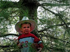 Little Bro (mhmurphy14) Tags: pinetree football toddler cowboy littleboy cowboyhat littlecowboy