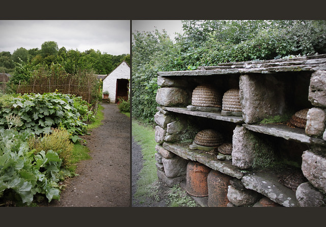 Kennixton Farmhous Garden and Bee Shelter