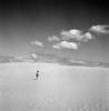 Surpopulation (2.) Tags: dune mat 124g 100 yashica acros pyla virela gardela virela2 gardela2 virela3 gardela3 virela5 virela6 virela7 gardela4 gardela5 virela8 gardela6 gardela7 gardela8 gardela9 gardela10