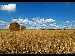 Watching the clouds passing by (RainerSchuetz) Tags: clouds harvest bluesky stubblefield baleofstraw mywinners abigfave platinumphoto selectbestexcellence sbfmasterpiece haybalestubble