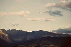 Synonym for solo. (ETHANEA) Tags: world sky sunlight mountain mountains green bird nature clouds contrast alpes canon landscape photography eos daylight high day escape view time cloudy earth space wide hard damien breathe ditoro ethanea damienditoro ethaneacom