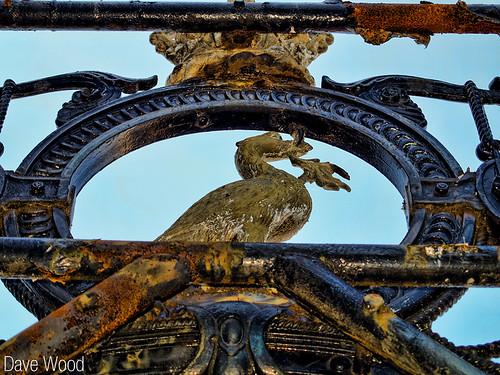 Henry Pooley Gates Liver Bird