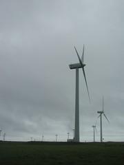 Cape Grim windfarm (spelio) Tags: nov 2005 travel ted windmill weather technology power tasmania alternative cleanair tasi