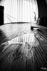 365/250 - I'm not going to cry over spilt milk (DevilFishMark) Tags: wood shadow blackandwhite glass blackwhite milk shadows floor ground blinds 365 split spill 2010 fromtheground project365 nex3 imnotgoingtocryoverspiltmilk